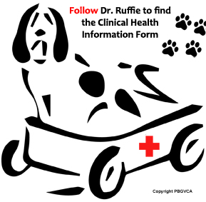 Follow Dr. Ruffie