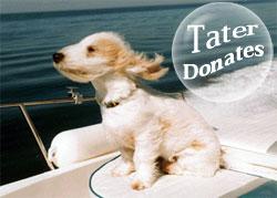 Tater Donates
